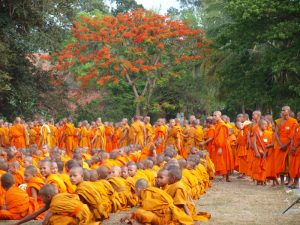 A large group of monks sitting together in orange robes
